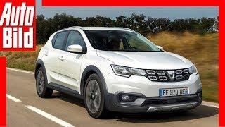 Zukunftsaussicht: Dacia Sandero (2019) Details / Erklärung