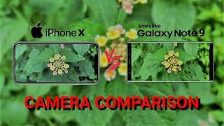 Samsung Galaxy Note 9 Vs iPhone X Camera Comparison
