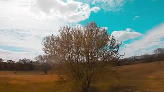 I wasn't going to upload this clip | FPV Freestyle