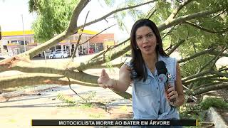 JMD (11/11/19) - Motociclista morre ao bater em árvore caída