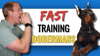 Training a Doberman to Understand Your Commands