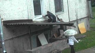 Гатчина Чехова 9, лох это судьба)