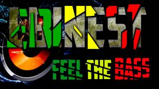 Trinidad Jame$, 2Chainz, Future, Waka Flocka,Gucci Mane - Hoodrich Anthem  (Bass boosted - HD)