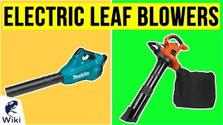 10 Best Electric Leaf Blowers 2020