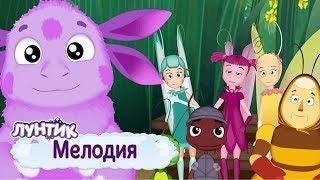 Мелодия 🎼 Лунтик 🎹 Сборник мультфильмов 2019
