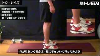 【足首の強化におすすめ!】すねの前側にある前脛骨筋を鍛える!「トゥーレイズ」