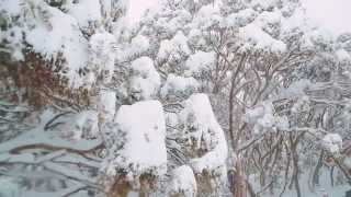 Perisher - 30cm of Snow Arrives in Perisher Overnight