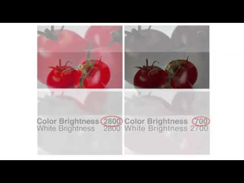 Know Your Colour Brightness