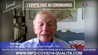 IMO#78 - L'Egypte face au coronavirus