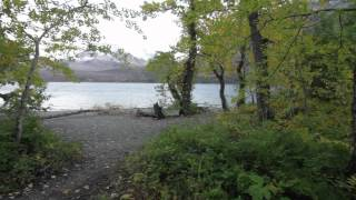 Trip video of the short trail from the Rising Sun picnic area to the boat dock.