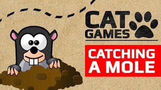 CAT GAMES - CATCHING A MOLE (ENTERTAINMENT VIDEOS FOR CATS TO WATCH) 60FPS