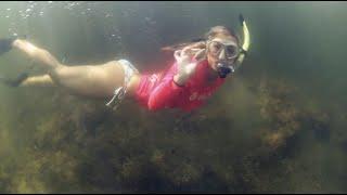 Summer Scalloping on Florida's Adventure Coast, Brooksville-Weeki Wachee (2021)