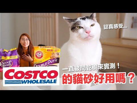 Costco的貓砂好用嗎?