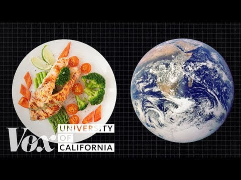 Would You Change Your Diet to Fight Climate Change?