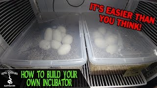 DIY REPTILE EGG INCUBATOR (How to build your own)