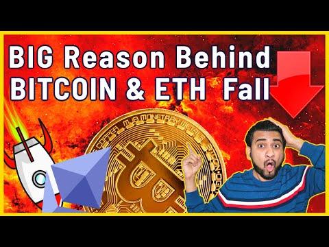Bitcoin trading forum whaleclub