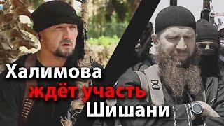 Халимова ждёт участь Шишани