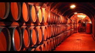 Como hacer un gran vino. Capítulo 7 de 8| Javier Romero