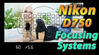 Nikon D750 Tutorial Training - Focusing Systems - How to