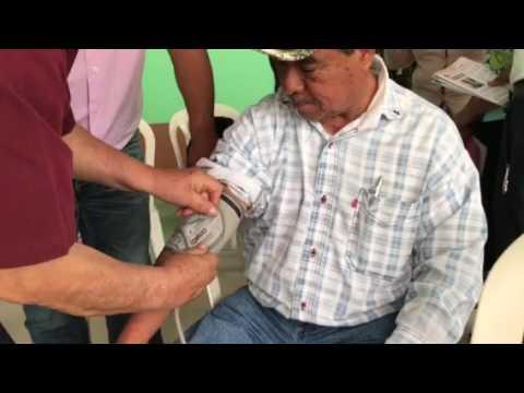 Hipertensión lábil ancianos