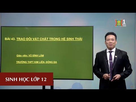 MÔN SINH HỌC - LỚP 12 | BÀI 43: TRAO ĐỔI VẬT CHẤT TRONG HỆ SINH THÁI | 14H30 NGÀY 18.04.2020 (HANOITV)