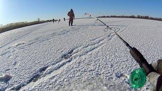 Ловля хищника зимой на балансиры