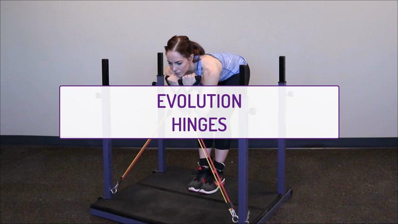 Evolution Hinges