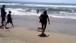 """la """"mimi"""" en la playa de Rosarito"""