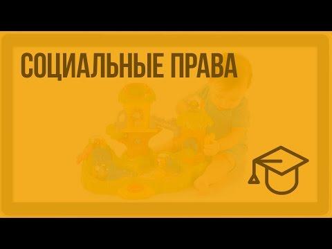 Социальные права. Видеоурок по обществознанию 9 класс