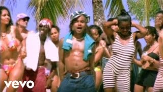Shaggy & Rayvon - In The Summertime