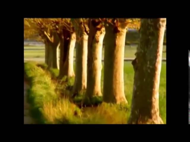 Birdenbire/Orhan Veli Kanık Şiiri