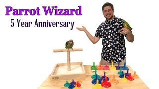Parrot Wizard 5 Year Anniversary