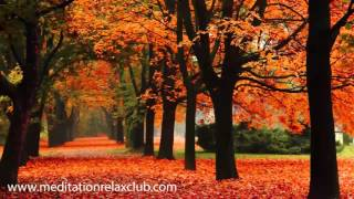 15 Minutos Musica De Piano Relaxante, Música Do Fundo Doce Para O Outono