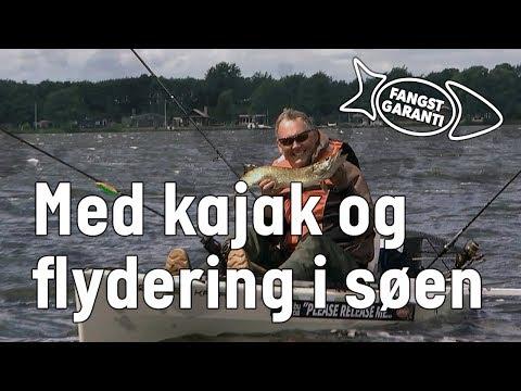 Geddefiskeri på Sunds Sø med Fangstgaranti
