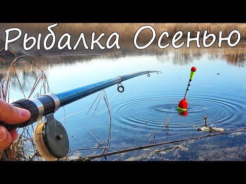 Ловим только крупного карася предохраняет рыбу от опасных