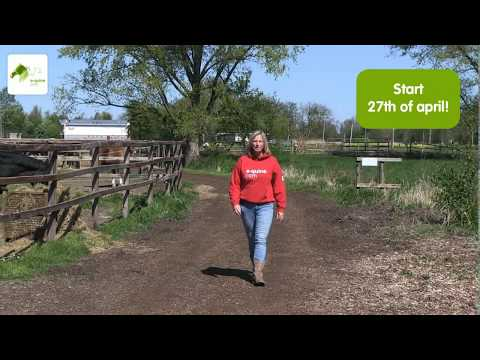 FREE ONLINE COURSE HORSE PSYCHOLOGY - YouTube