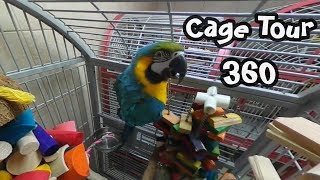 360 Degree Video Tour of Parrots' Cages