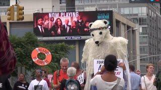 Climate Hustle (2016) Video