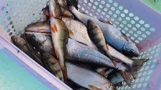 Рыбалка малом море