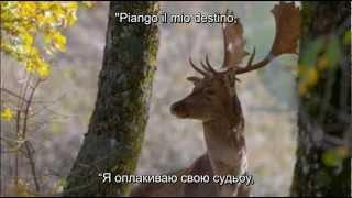Angelo Branduardi 976 - Il Dono Del Cervo