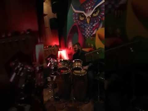 Sanzaru Monkeys Gruppo Nu Soul Milano musiqua.it
