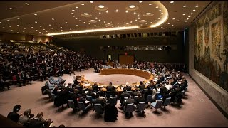 UN Security Council holds urgent meeting on Syria (streamed live)