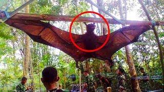 10 самых НЕВЕРОЯТНЫХ ОТКРЫТИЙ в джунглях