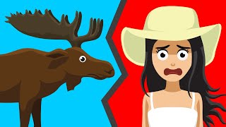 What to Do When a Moose Charges You