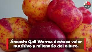 Qali Warma: avances en alimentación escolar