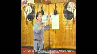 USA GOJU_2010_ Oct_ Gamba_ Tora Dojo #1