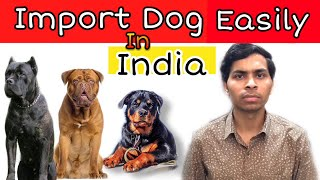 How to Import Dogs in India Full Information( Rules & Required Documents ) | Amit Choudhary |