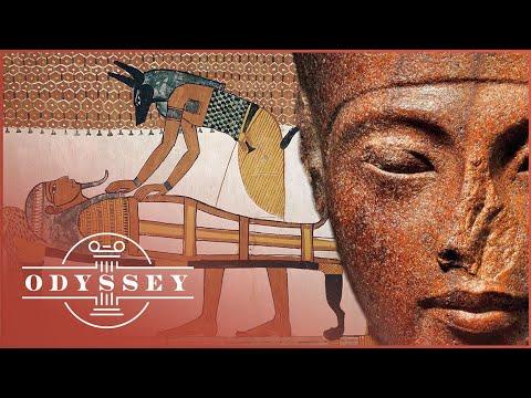 Seks. Dood en de lotus: wat verbindt een waterlelie, het hiernamaals en seks in het oude Egypte?
