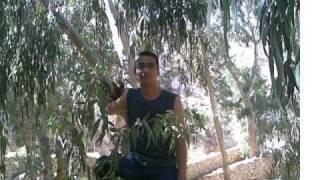 مازيكا تامر حسني ايام زمان من البوم قرب كمان تحميل MP3