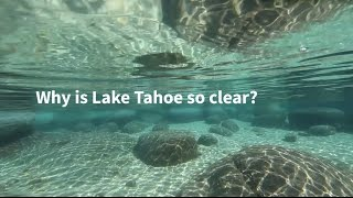 Why Is Lake Tahoe So Clear?